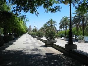 Paseo Marqués de Contadero